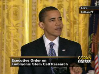 Embryonic stem cell research paper
