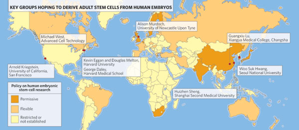 stalemate human embryonic stem cell research In vitro fertilization and human embryonic stem cell research are two of the most popular and controversial topics that are being discussed today.